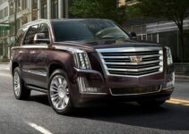 4 Best Batteries for Cadillac Vehicles (Escalade, etc.)